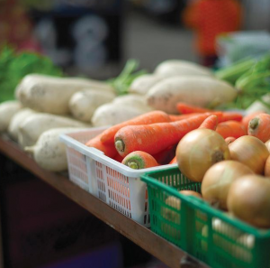农产品追溯体系